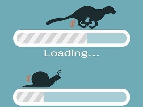 SEO Loop Haiti ou la tortue du Web